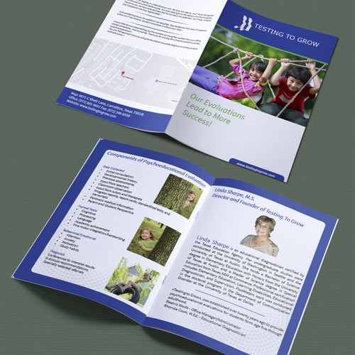 disabilities brochure Intellectual disability fact sheet intellectual disability, previously known as mental retardation, is a term used when there are limits to a person's ability to learn at an.