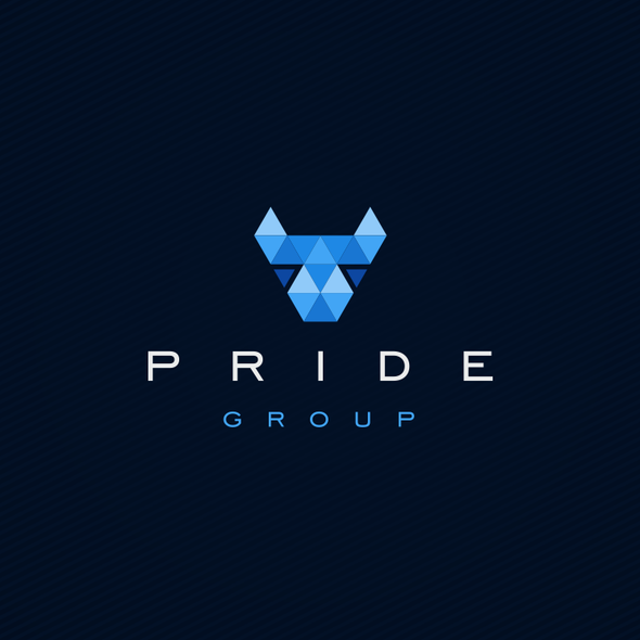 Pride design with the title 'holding company'