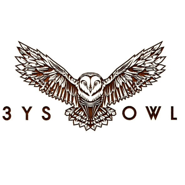 Cover logo with the title '3YSOwl'