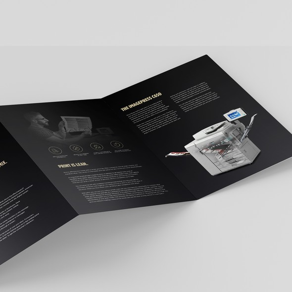 Bronze design with the title 'Luxurious 6pp Dutch language brochure'