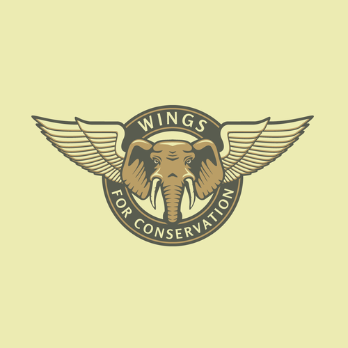 Aviation logo with the title 'Vintage Logo for Conservation by Aviation'