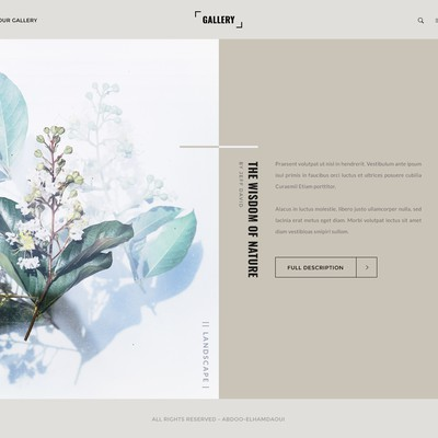 Gallery Creative Display Design