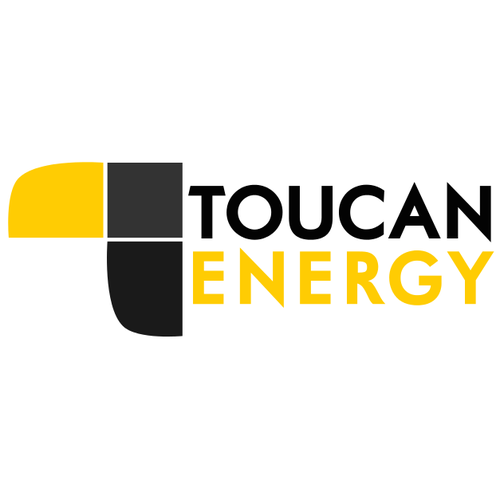 Toucan logo with the title 'Creation of a new oil and gas exploration company identity'