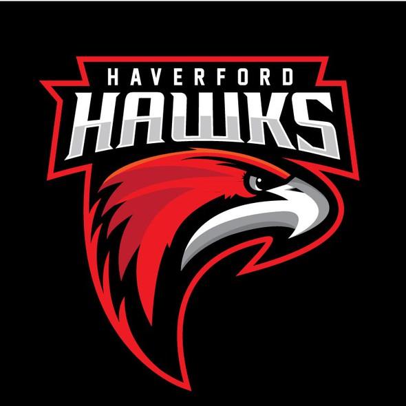 Team jersey logo with the title 'Hawks Hockey logo'