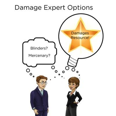 Damage expert options