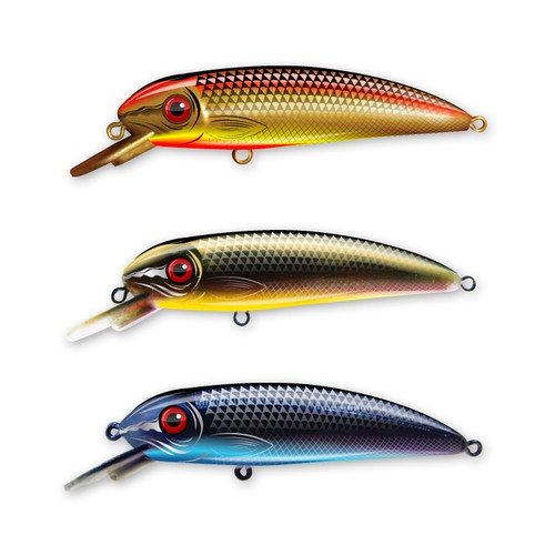 Fish artwork with the title 'Fishing Lure Design for Outdoor Leisure'
