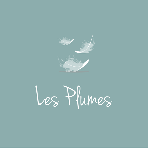 Flying logo with the title 'Dreamy logo for a B&B in France'