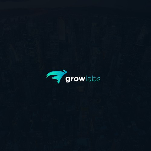 Fly logo with the title 'Logo for GrowLabs'
