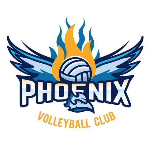 Volleyball design with the title 'Logo design contest entry'