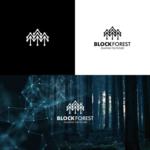 Cryptocurrency logo with the title 'BLOCK FOREST'