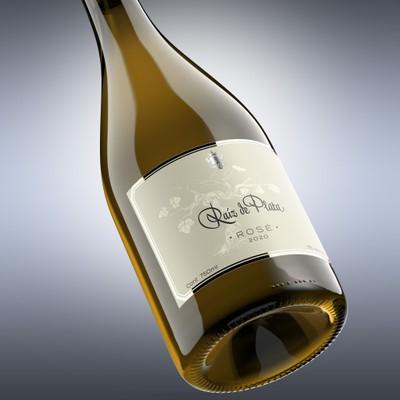 Project for Mexican wine Raìz de Plata, varietal (Rosé) vintage (2020)