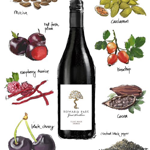 Hand-painted illustration with the title 'Hand Drawn illustration for a wine company'