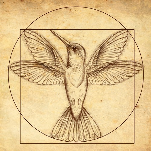 Handcrafted design with the title 'Hummingbird drawing '