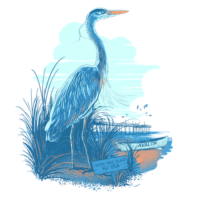 blue heron for seashore outfitters