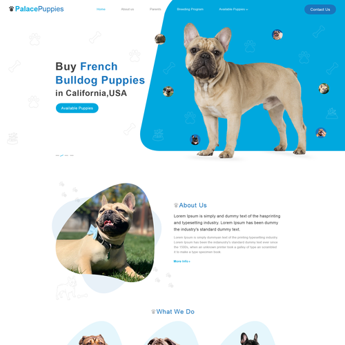 Animal hospital design with the title 'Palace Puppies'