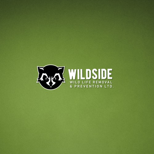Raccoon logo with the title 'Racoon Logo'