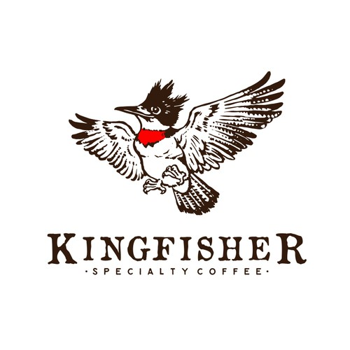 Sketch brand with the title 'Logo Concept for Kingfisher - Specialty Coffee'