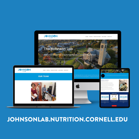 Science website with the title 'THE JOHNSON LAB | Research Facility'