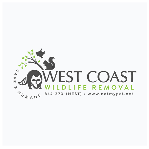 Balanced design with the title 'Wildlife Removal Logo'