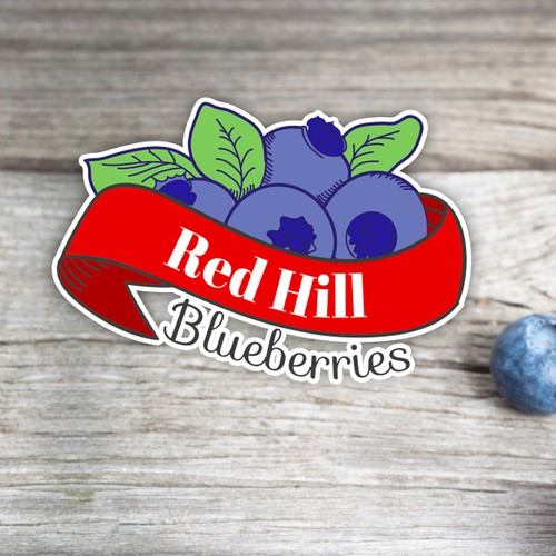 Blueberry logo with the title 'Blueberries Logo - Color variation'