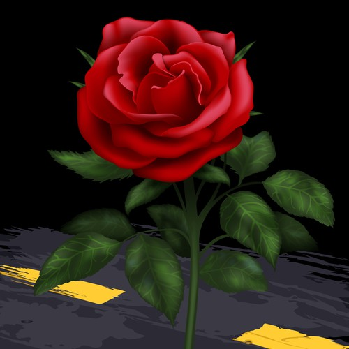 Road design with the title 'Vector Rose'