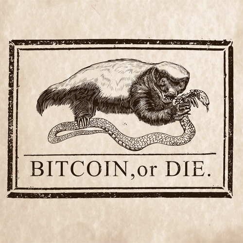 Bitcoin artwork with the title 'BITCOIN,or DIE'
