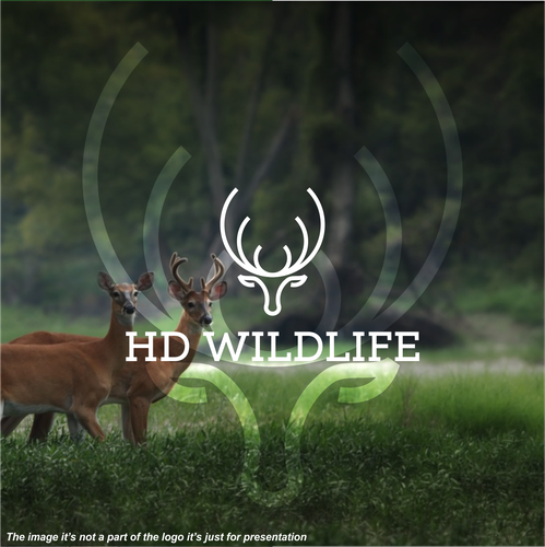 Deer logo with the title 'HD Wildlife'