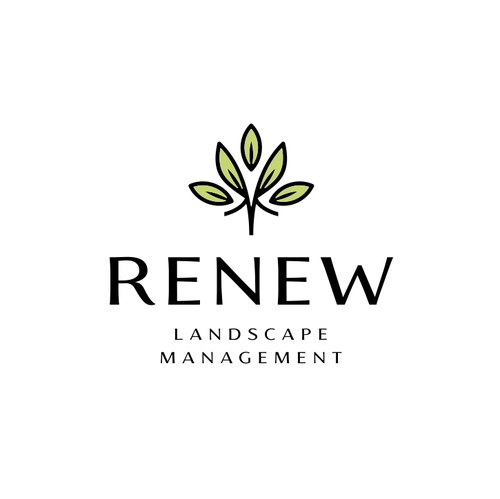 Lilac logo with the title 'RENEW'