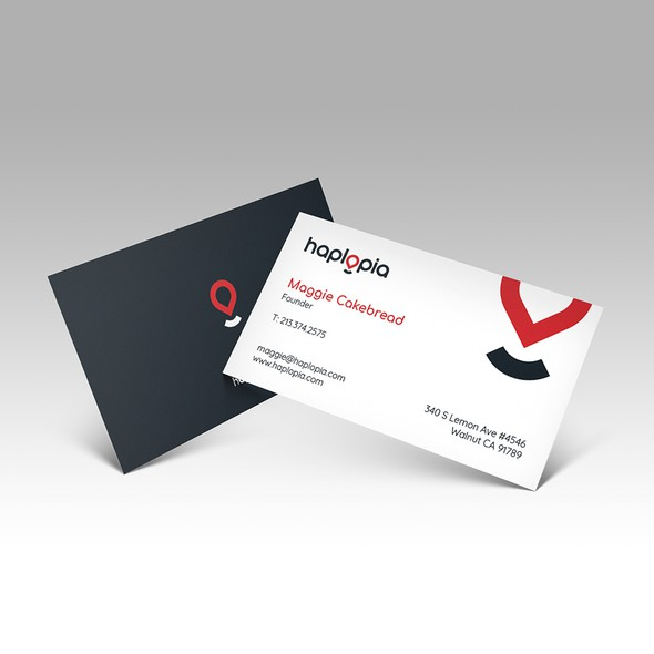 Travel agency brand with the title 'Brand Identity for Haplopia'
