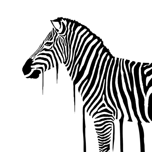 Horse illustration with the title 'Splash Out Zebra'