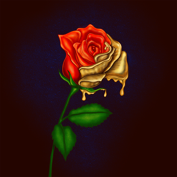 Rose illustration with the title 'Album Cover'