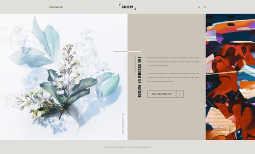 Animation website with the title 'Gallery Creative Display Design'
