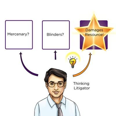 Thinking litigator