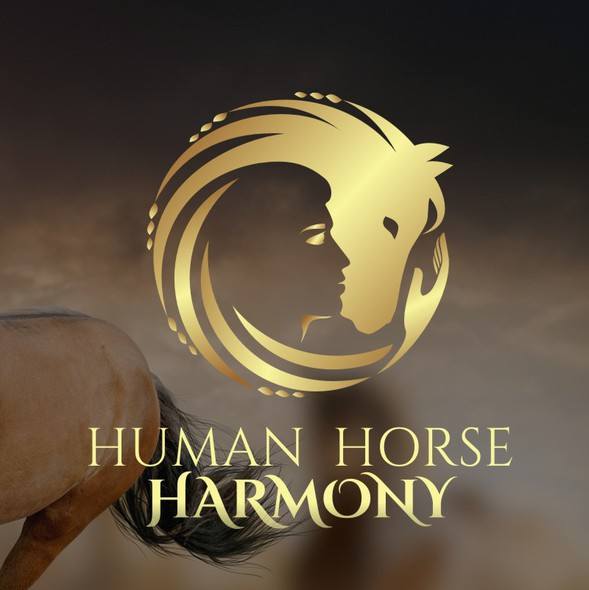 Human figure logo with the title 'A person with a horse in harmony'