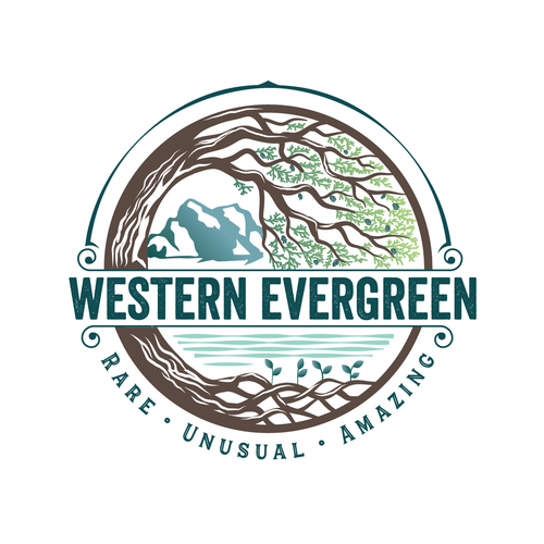 Forest logo with the title 'Western Evergreen Logo'