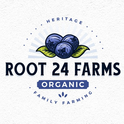 Blueberry design with the title 'Root 24 Farms'