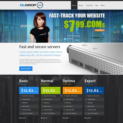Company website with the title 'Web hosting'