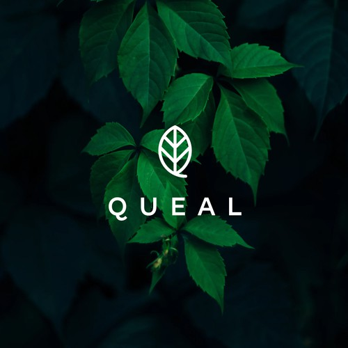 Vegetarian logo with the title 'Queal - for SALE!'