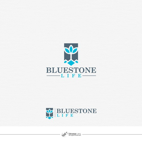 Stone logo with the title 'Blue Stone Life'