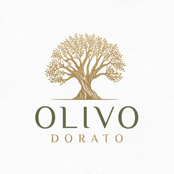Branch design with the title 'Olive Tree Logo'