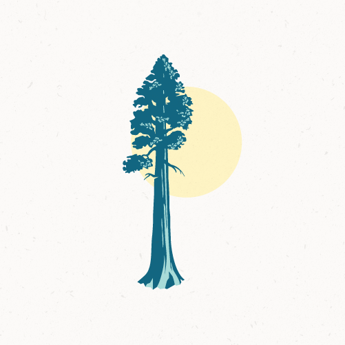 Redwood design with the title 'Majestic sequoia'