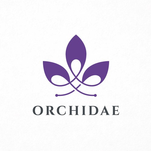 Stylish logo with the title 'Modern Orchidae!'
