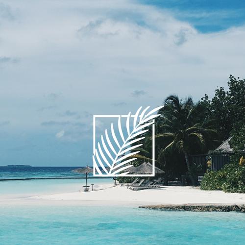 Coastal logo with the title 'Tropical logomark for sale'