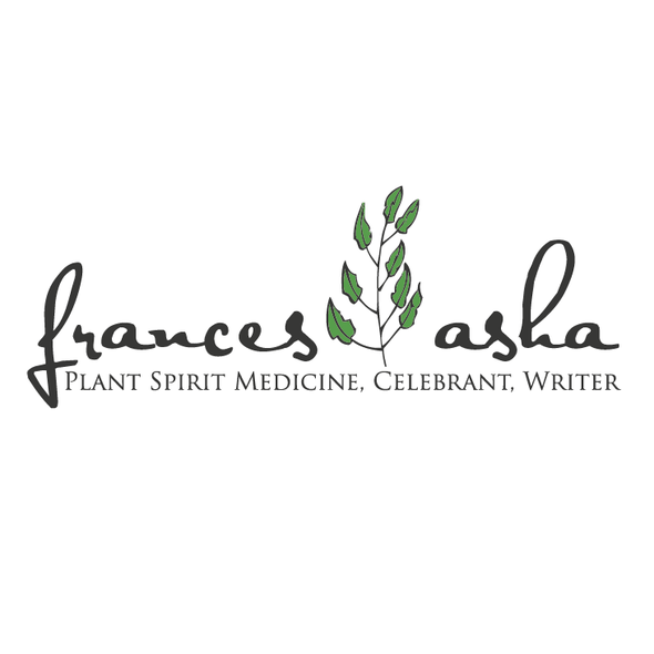 Herbal design with the title 'medical herbal logo '