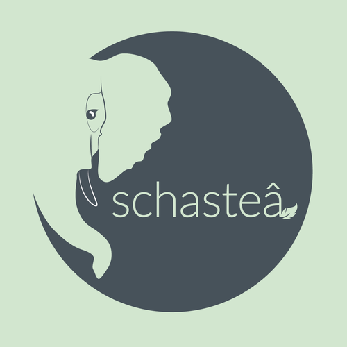 Experience logo with the title 'Tearoom & Crêperie: Schasteâ '