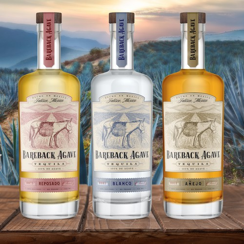 Tequila design with the title 'Tequila label design and hand drawn illustration for Bareback Agave brand'