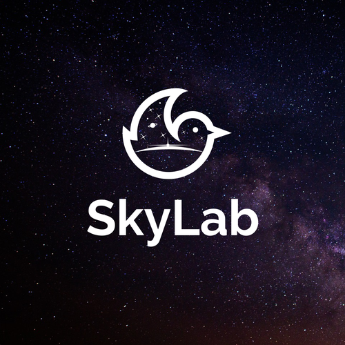 Sky logo with the title 'Logo for a social network in scientific fields'