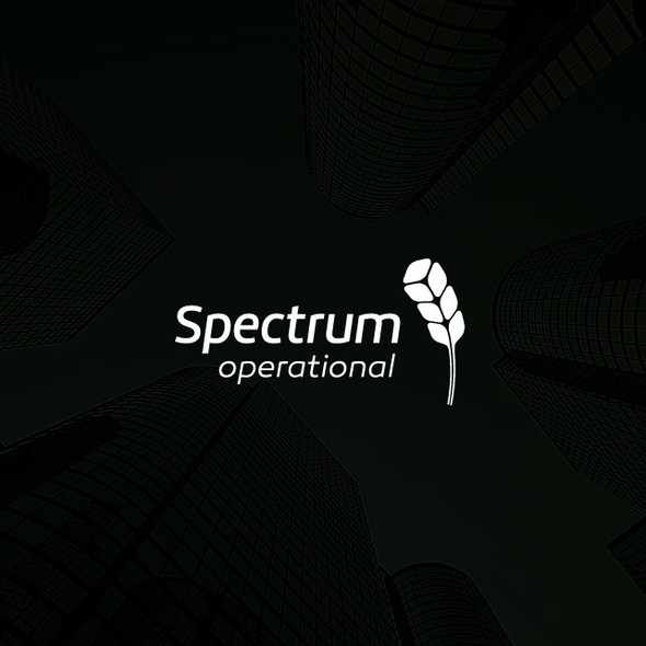 Spectrum logo with the title 'Software Company Logo'