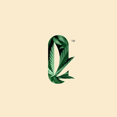 Nature design with the title 'Sillo hemp Co logotype'