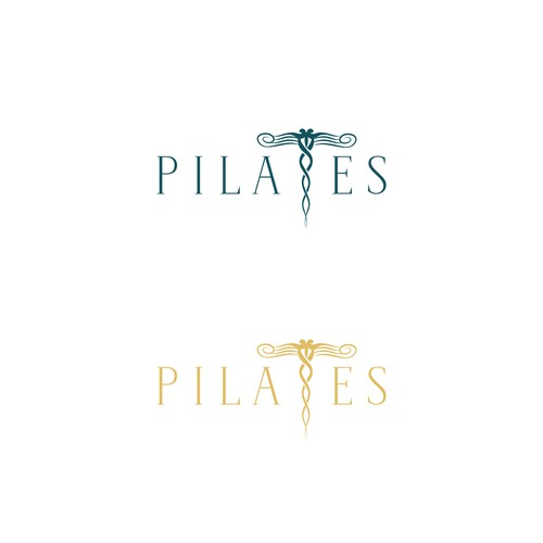 Physical logo with the title 'Logo concept for Pilates studio '